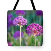 Allium Flowers - Featured 3 Tote Bag