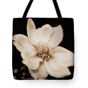 Alluring Anemone Tote Bag