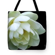 Alluring Lotus Tote Bag