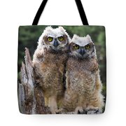 Ally And Olly Tote Bag