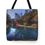 Ally Springs Mill  The Fall Tote Bag