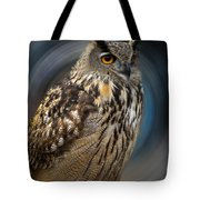 Almeria Wise Owl Living In Spain  Tote Bag