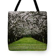 Almond Orchard Tote Bag
