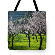 Almond Trees In Bloom Tote Bag