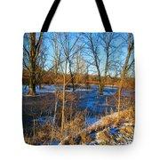 Almost Spring 2015 Tote Bag