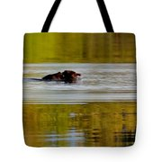 Almost There Tote Bag