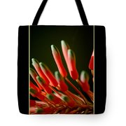 Aloe Bloom Window 2 Tote Bag
