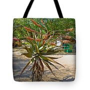 Aloe Plant In Kruger National Park-south Africa Tote Bag