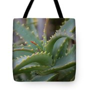 Aloe Vera Leaves  Tote Bag