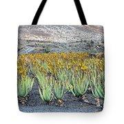 Aloevera Plantation Lanzarote Tote Bag