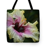 Aloha Aloalo Tropical Hibiscus Haiku Maui Hawaii Tote Bag