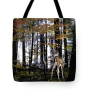 Alone In The Mist Tote Bag