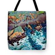 Along California Coastline Tote Bag