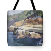 Along Coast Walk In La Jolla, San Diego, California Tote Bag