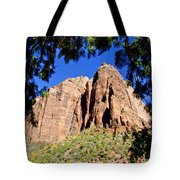 Along Emeral Pools Trail - Zion Tote Bag