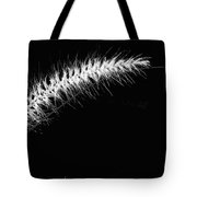 Along The Bend - Bw Tote Bag