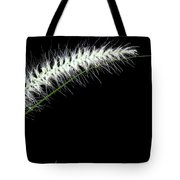 Along The Bend  Tote Bag