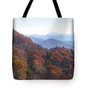 Along The Blue Ridge Parkway  N C Tote Bag
