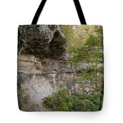 Along The Grotto Tote Bag