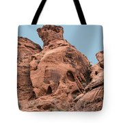 Along The Path Tote Bag