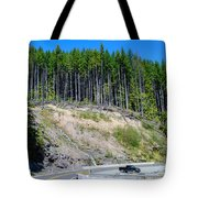 Along The Roadway Tote Bag
