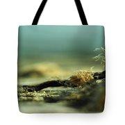 Along The Sea-coast Tote Bag