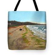 Along The Shore In Hyde Hole Beach Rhode Island Tote Bag