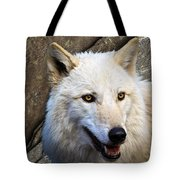Along The Wall Tote Bag