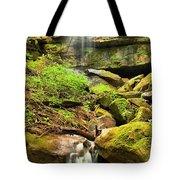 Alpha Falls Cascades Tote Bag