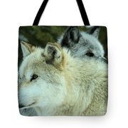Alpha In The Background Tote Bag