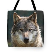 Alpha Male Wolf - I'm Watching You Tote Bag