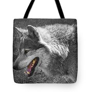 Alpha Male Wolf - You Look Tasty 2 Tote Bag