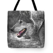 Alpha Male Wolf - You Look Tasty Tote Bag