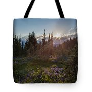 Alpine Meadow Sunrays Tote Bag