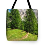 alpine path in Contrin Valley Tote Bag