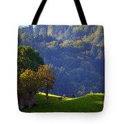 Alpine Summer Scene In Switzerland Tote Bag