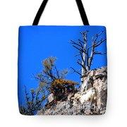 Alpine Wyoming Tote Bag