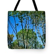 Alternate Reality - Reflected View Of The Forest From A Pond In Garland Ranch Park In Carmel Valley. Tote Bag