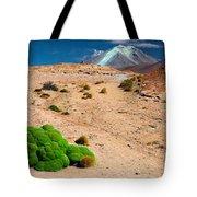 Altiplano Landscape Tote Bag