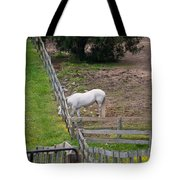 Always Greener On The Other Side Tote Bag