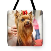 Am I Beautiful? Tote Bag