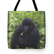 Am I In Trouble Tote Bag