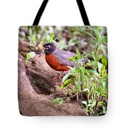 Am Robin Tote Bag