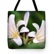 Amaryllis Belladonna Naked Ladies Tote Bag