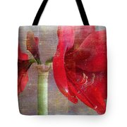 Amaryllis In The Rough Tote Bag