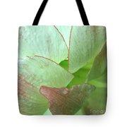 Amaryllis Petals Tote Bag