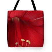 Amaryllis6720 Tote Bag