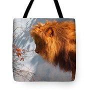 Amazing Male Lion Tote Bag