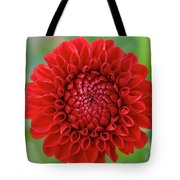 Amazingly Perfect Tote Bag
