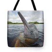 Amazon River Dolphin Spy-hopping Rio Tote Bag